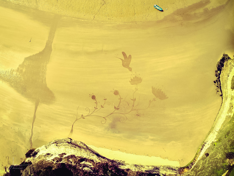 Beach art colibri