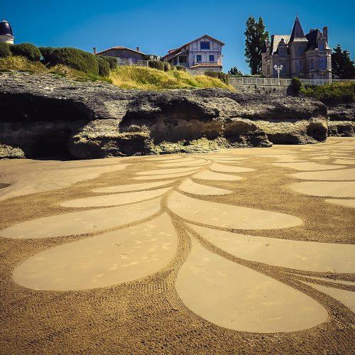 Beach art pétales