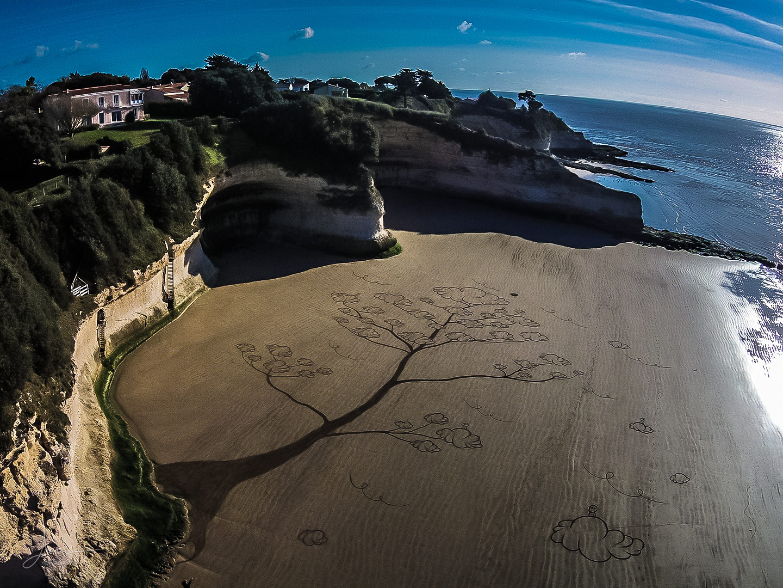 Beach art arbres à rêves