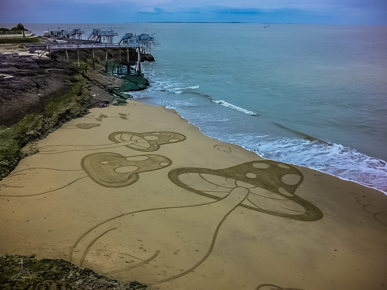 Beach art champignons fous