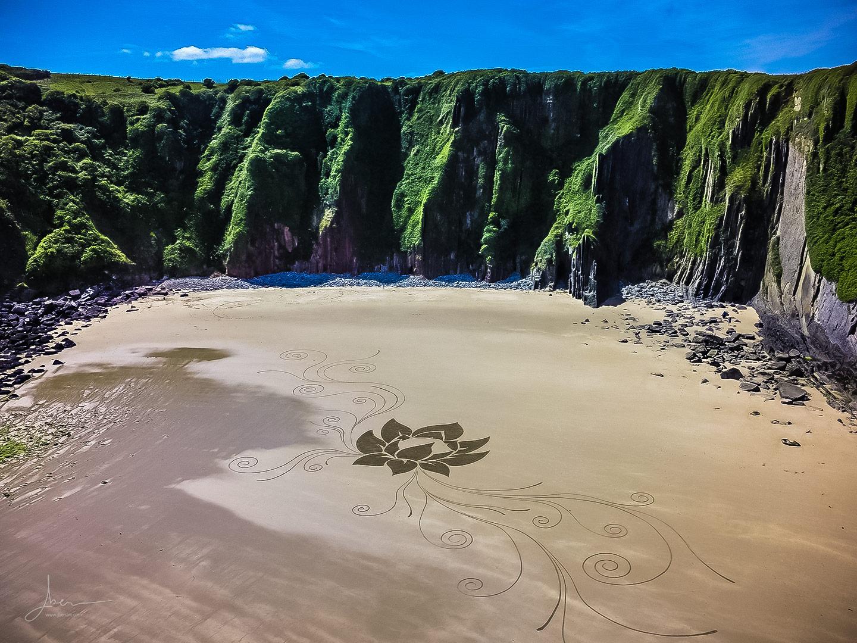 Beach art lotus perdu