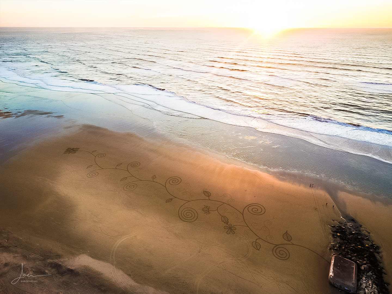 Beach art floralitude