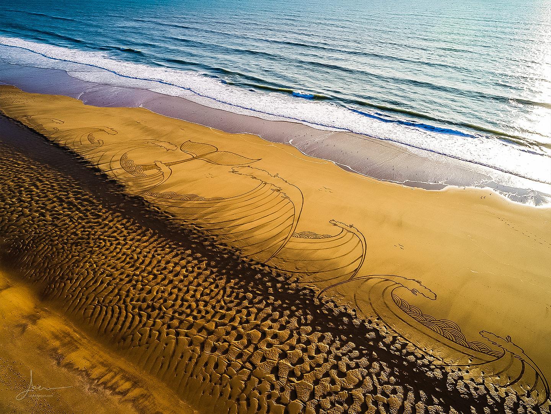 beach art la baleine